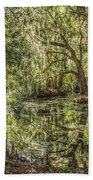 Swamp Reflections Beach Towel