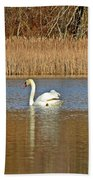 Swan And Swallow Beach Towel