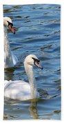 Swan Day Beach Towel