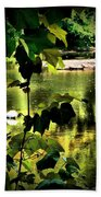 Swan Dive Beach Towel