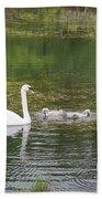 Swan Family Squared Beach Towel