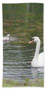 Swan Family Beach Towel by Teresa Mucha