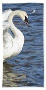 Swan Feather Beach Towel