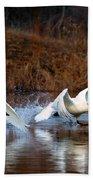 Swan Lake Beach Towel by Mike  Dawson