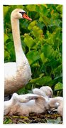 Swan Song Beach Towel