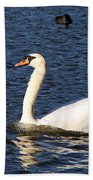 Swan Swim Beach Towel