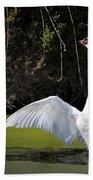 Swan Wings Spread Beach Towel