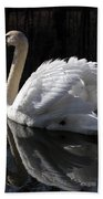 Swan With Reflection  Beach Towel