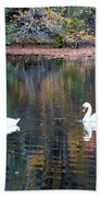 Swans At Betty Allen Beach Towel