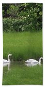 Swans Of Chatham Beach Towel