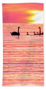 Swans On The Lake Beach Towel by Jon Neidert