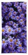Sweet Dreams Of Purple Daisies Beach Towel