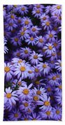 Sweet Dreams Of Purple Daisies Beach Towel