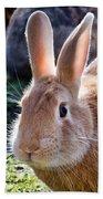 Sweet Little Bunny Beach Towel