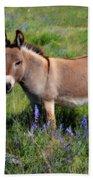 Sweet Miniature Donkey Beach Towel