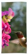 Sweet Pea Hummingbird Beach Towel