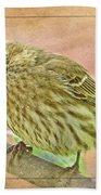 Sweet Pose Female Housefinch Beach Towel