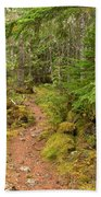 Swim Lake Trail Beach Towel
