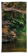 Swimming Hole Beach Towel
