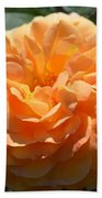 Swirling Peach Rose Beach Towel