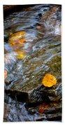 Swirling Stream Of Leaves  Beach Towel