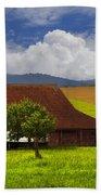 Swiss Farms Beach Towel