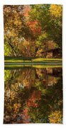 Sycamore Reflections Beach Towel