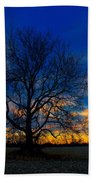 Sycamore Sunset Beach Towel