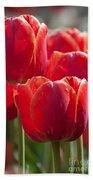 Symbolic Tulips Beach Towel