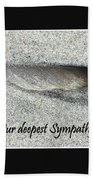 Sympathy Feather Beach Towel