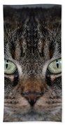 Tabby Cat Face Beach Towel