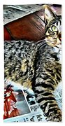 Tabby Cat On Newspaper - Catching Up On The News Beach Towel