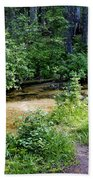 Tacoma Creek 1 Beach Towel