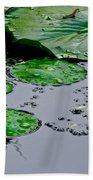 Tadpole Haven Beach Towel by Frozen in Time Fine Art Photography