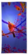 Taking Flight By Jrr Beach Towel
