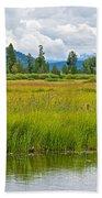 Tall Grasses In Swan Lake In Grand Teton National Park-wyoming Beach Towel