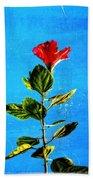 Tall Hibiscus - Flower Art By Sharon Cummings Beach Sheet