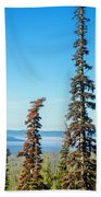 Tall Pine Trees And Hilly Background Beach Towel