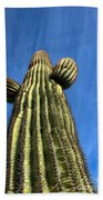 Tall Saguaro Cactus Beach Towel