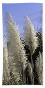 Tall Wispy Pampas Grass Beach Towel