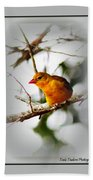 Tanager 4296-ttp Beach Towel