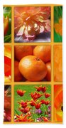 Tangerine Dream Window Beach Towel by Joan-Violet Stretch