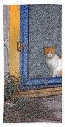 Taos Cat Beach Towel