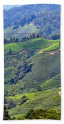 Tea Plantation In The Cameron Highlands Malaysia Beach Towel