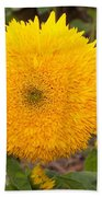 Teddy Bear Sunflower 2 Beach Towel