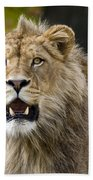 Teenage King Of The Beast Beach Towel