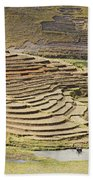 Terraces And Paddy Fields Beach Towel