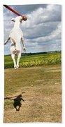 Terrier Ball Ballet Beach Towel