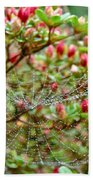 Tetragnathidae Web In Azalea - Cape Cod Ma Beach Towel