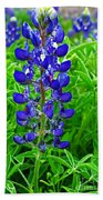 Texas Blue Bonnet Beach Towel
